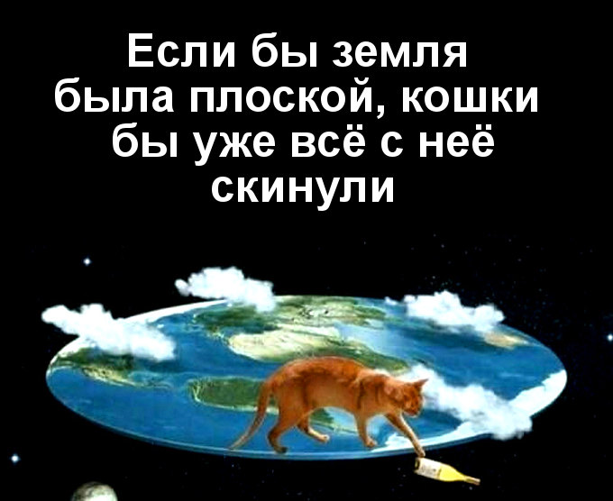 изображение: Если бы земля была плоской, кошки бы уже всё с неё скинули #Котоматрицы