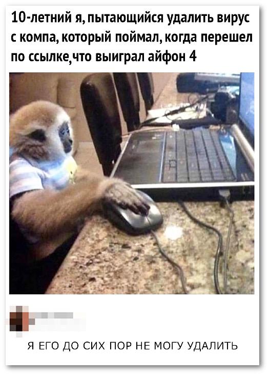 изображение: 10-летний я, пытающийся удалить вирус с компа, который поймал, когда перешёл по ссылке, что выиграл айфон 4. - Я до сих пор его не могу удалить. #Прикол