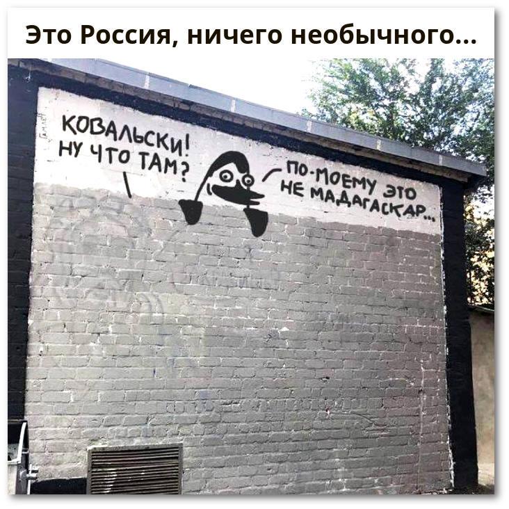 изображение: - Ковальски, ну что там? - По-моему, это ...не Мадагаскар ... - Это Россия, ничего необычного... #Смешные объявления