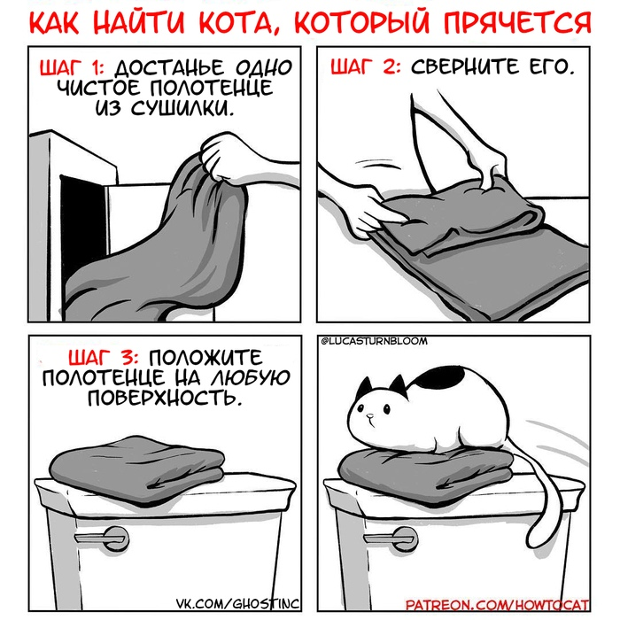 изображение: Как найти кота, который прячется. Шаг 1: достаньте одно чистое полотенце из сушилки. Шаг 2: сверните его. Шаг 3: положите полотенце на любую поверхность. #Прикол