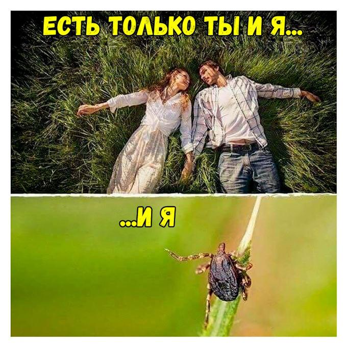 изображение: Есть только ты и я ... и я... #Прикол