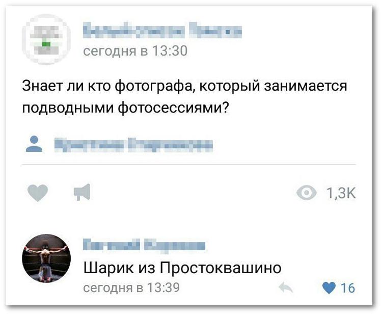 изображение: Знает ли кто фотографа, который занимается подводными фотосессиями? - Шарик из Простоквашино #Прикол