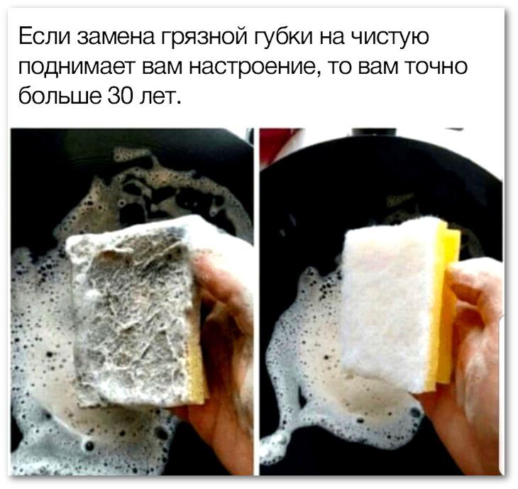 изображение: Если замена грязной губки на чистую поднимает вам настроение, вам точно больше 30 лет. #Прикол