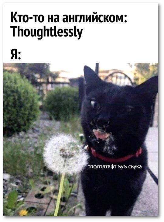 изображение: Кто-то на английском: Thoughtlessly. Я: .. #Прикол