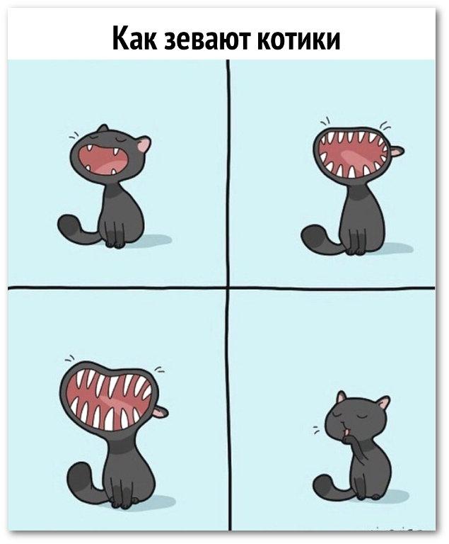 изображение: Как зевают котики #Прикол