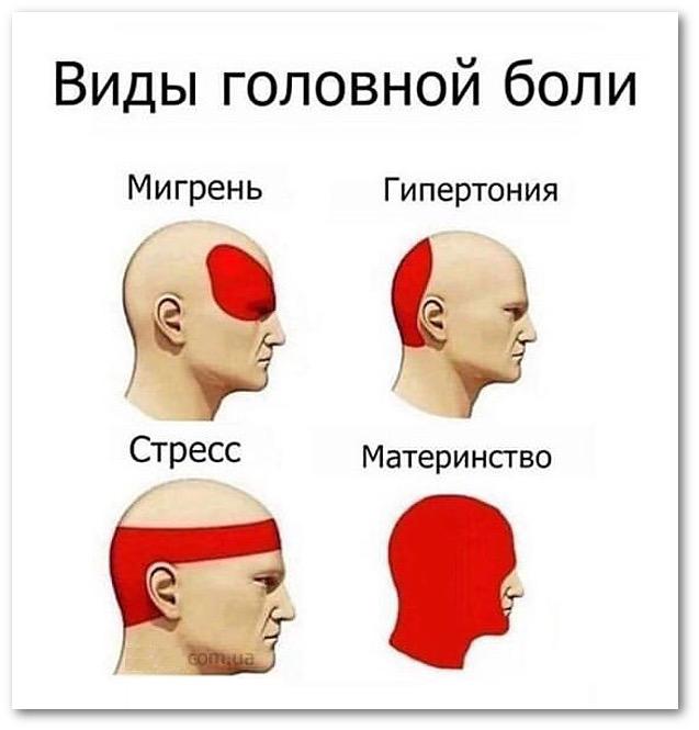 изображение: Виды головной боли: Мигрень; Гипертония; Стресс; Материнство #Прикол