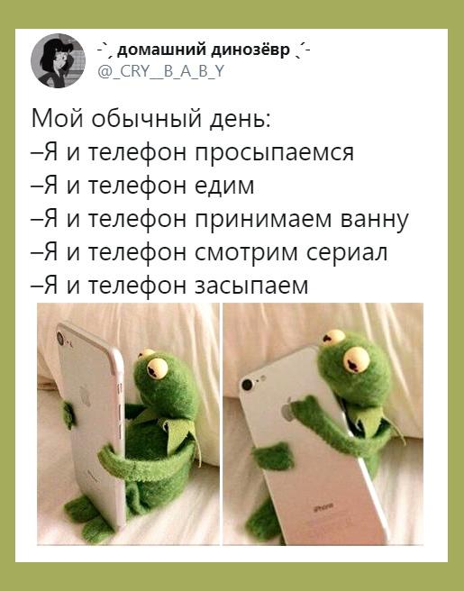 изображение: Мой обычный день: Я и телефон просыпаемся. Я и телефон едим. Я и телефон принимаем ванну. Я и телефон смотрим сериал. Я и телефон засыпаем. #Прикол