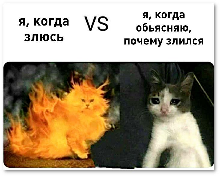 Я, когда злюсь VS Я, когда объясняю, почему злился | #прикол