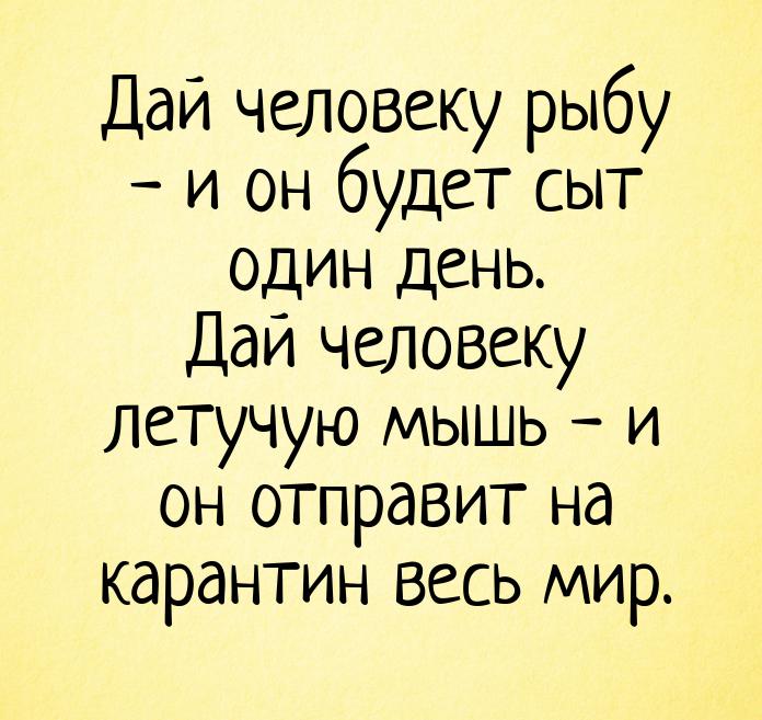 изображение: Дай человеку рыбу - и он будет сыт один день. Дай человеку летучую мышь - и он отправит на карантин весь мир. #Прикол