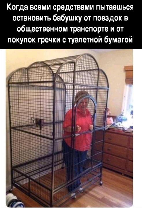 изображение: Когда всеми средствами пытаешься остановить бабушку от поездок в общественном транспорте и от покупок гречки с туалетной бумагой #Прикол