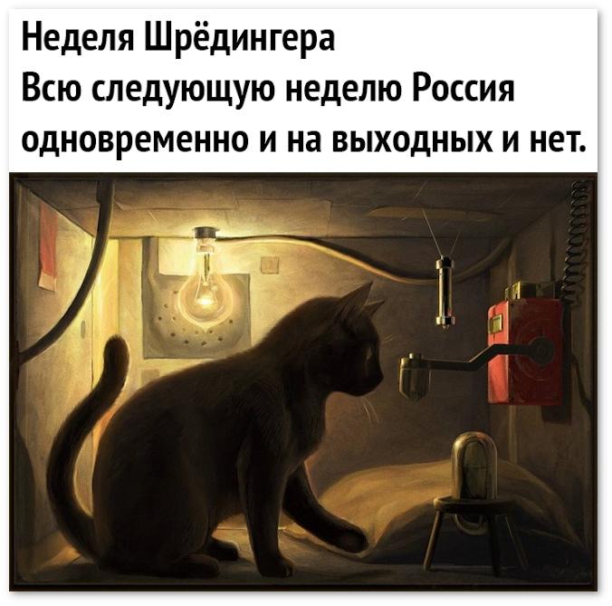 изображение: Неделя Шрёдингера. Всю следующую неделю Россия и на выходных, и нет. #Прикол