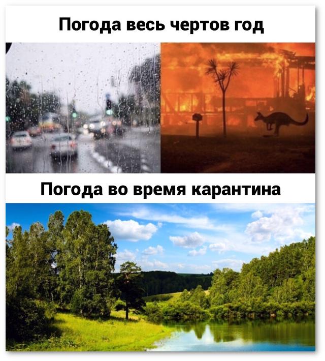 изображение: Погода весь год. Погода во время карантина. #Прикол