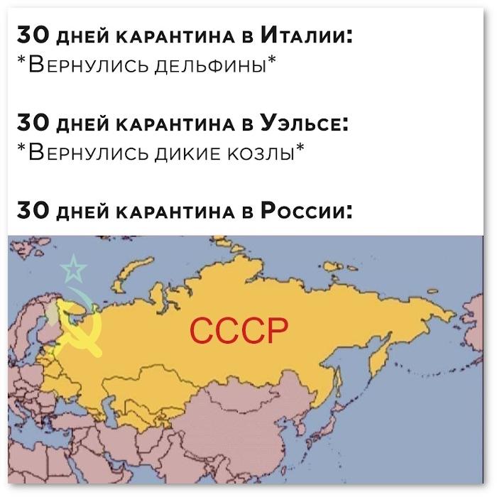 изображение: 30 дней карантина в Италии: - Вернулись дельфины. 30 дней карантина в России: СССР. #Прикол