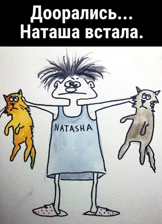 изображение: Доорались... Наташа встала. #Прикол
