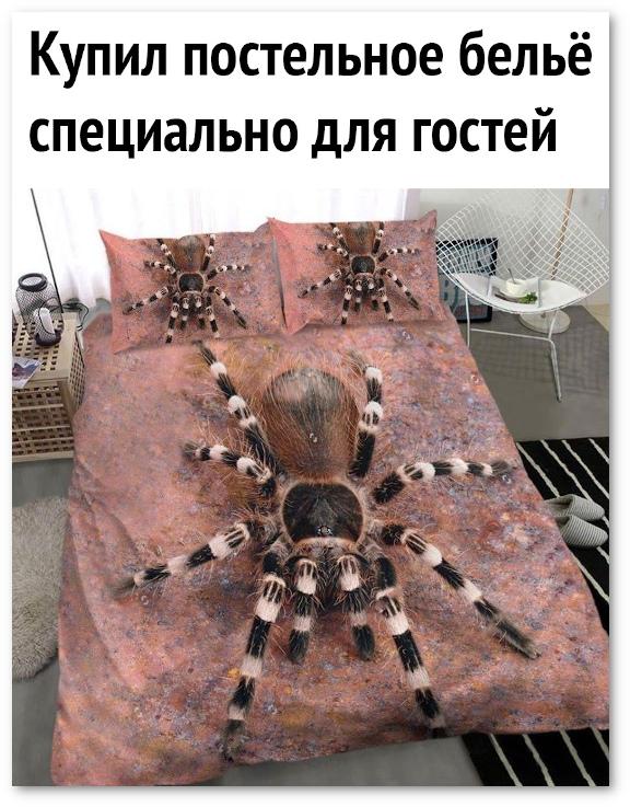 изображение: Купил постельное белье специально для гостей. #Прикол
