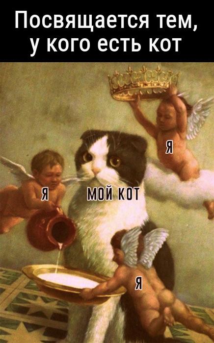 изображение: Посвящается тем, у кого есть кот. #Котоматрицы