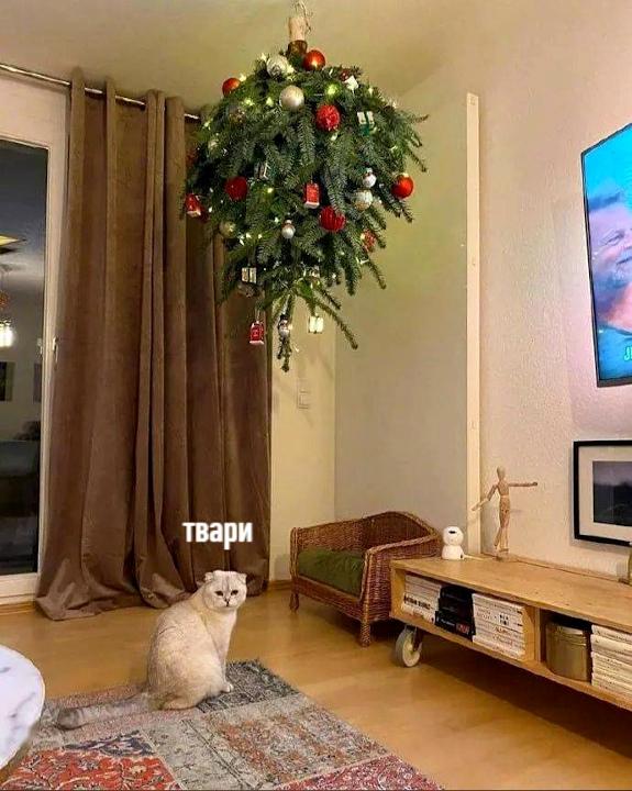 изображение: Защита ёлки от кота. - Твари! #Котоматрицы