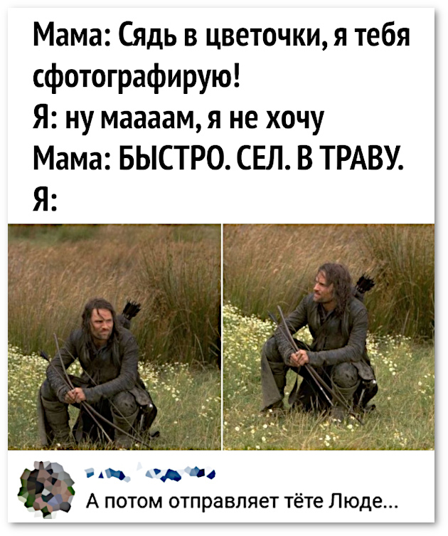 изображение: Мама: - Сядь в цветочки, я тебя сфотографирую! Я: Ну, мааам! Я не хочу! Мама: Быстро. Сел. В траву. Я: - А потом отправляет фото тёте Люде... #Прикол