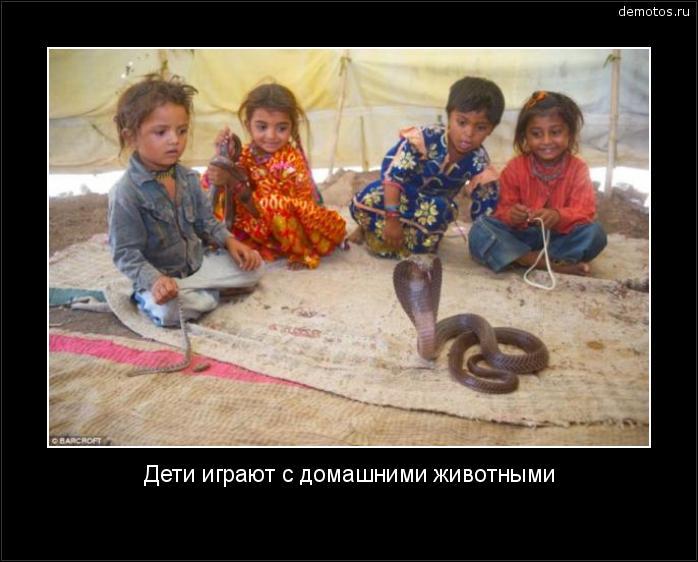 Дети играют с домашними животными