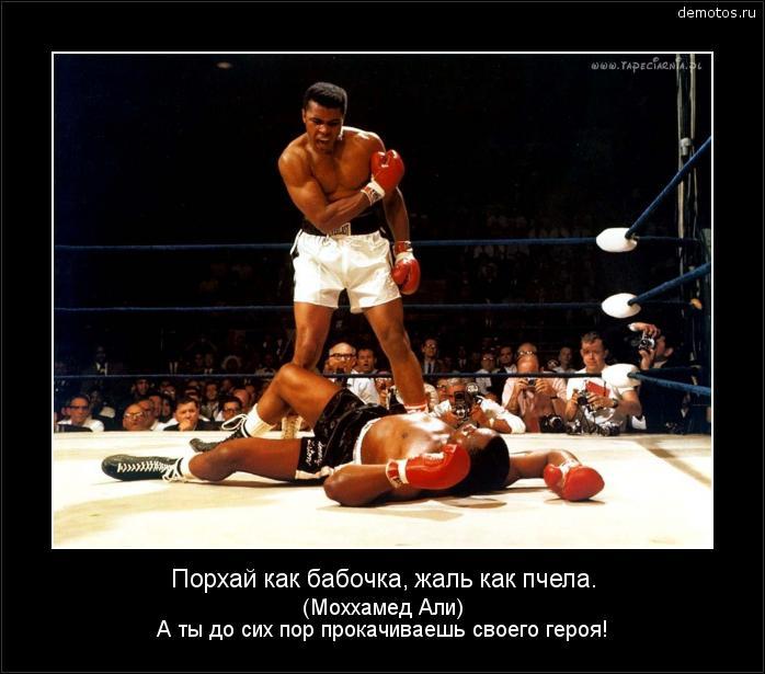 Порхай как бабочка, жаль как пчела. (Моххамед Али) А ты до сих пор прокачиваешь своего героя! #демотиватор