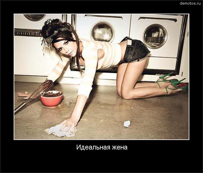 Идеальная жена #демотиватор