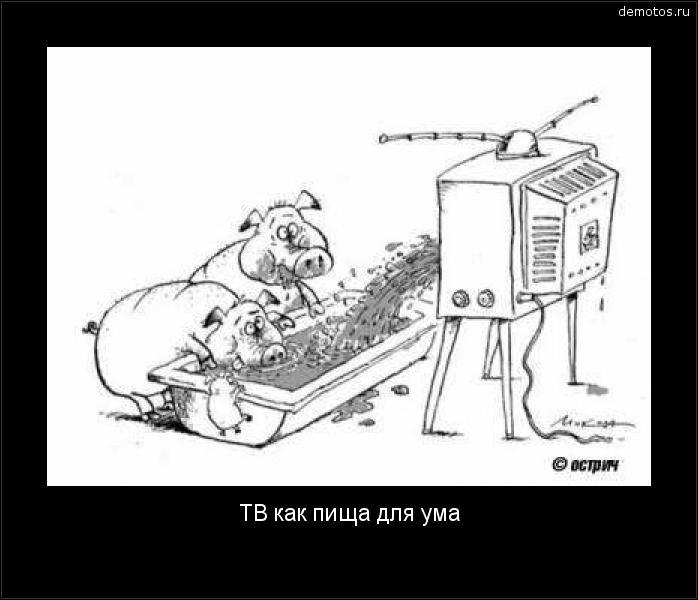 ТВ как пища для ума #демотиватор