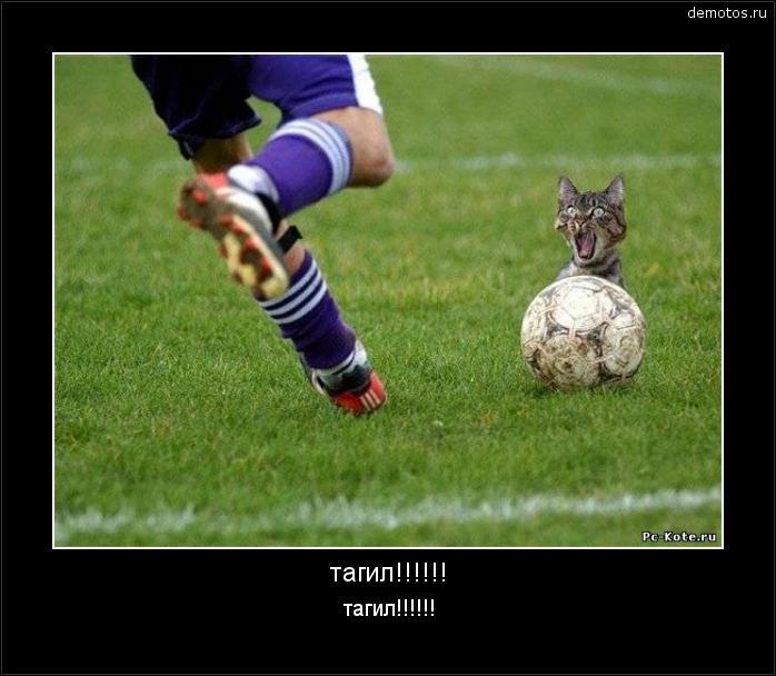 тагил!!!!!! тагил!!!!!! #демотиватор