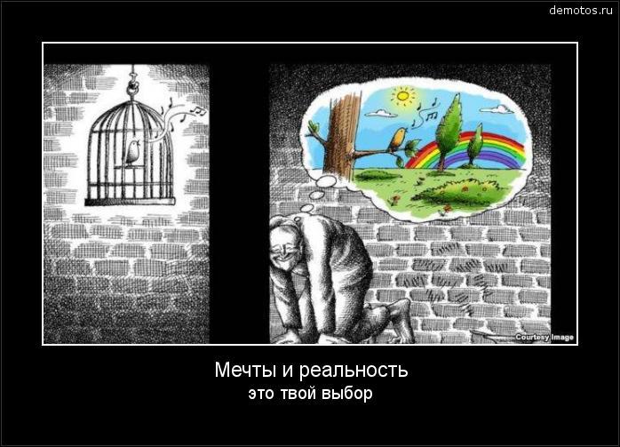 Мечты и реальность это твой выбор #демотиватор