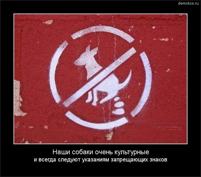 Наши собаки очень культурные и всегда следуют указаниям запрещающих знаков #демотиватор
