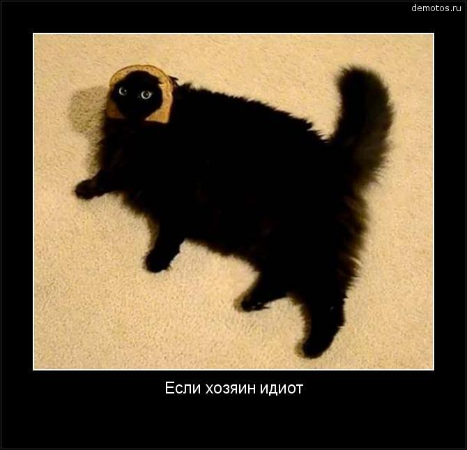 Если хозяин идиот #демотиватор