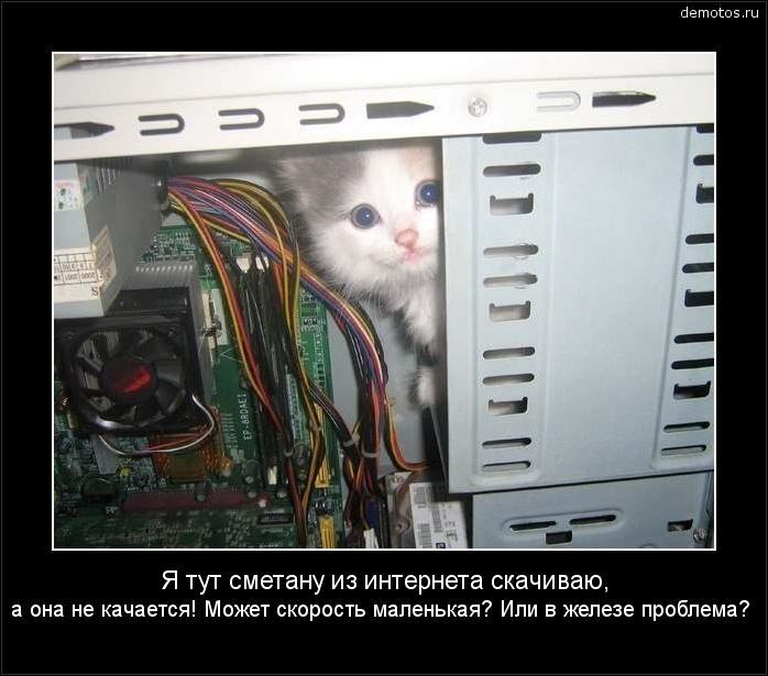 Я тут сметану из интернета скачиваю, а она не качается! Может скорость маленькая? Или в железе проблема? #демотиватор