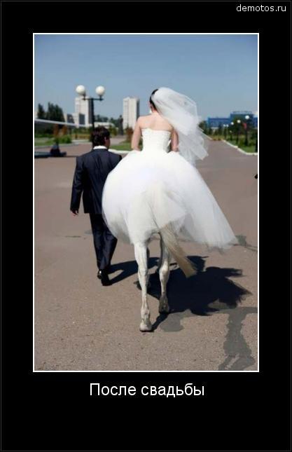 После свадьбы с женщиной происходят странные метаморфозы #демотиватор