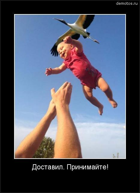Доставил. Принимайте! #демотиватор