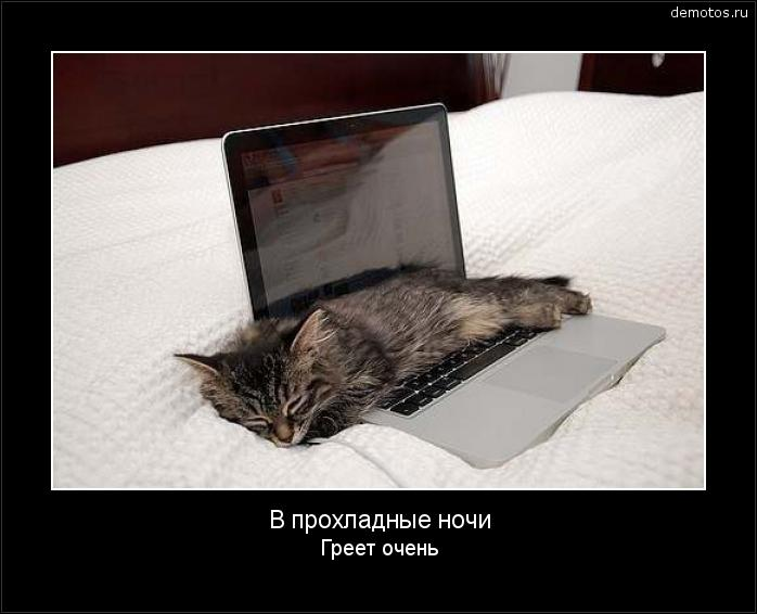 В прохладные ночи Греет очень #демотиватор