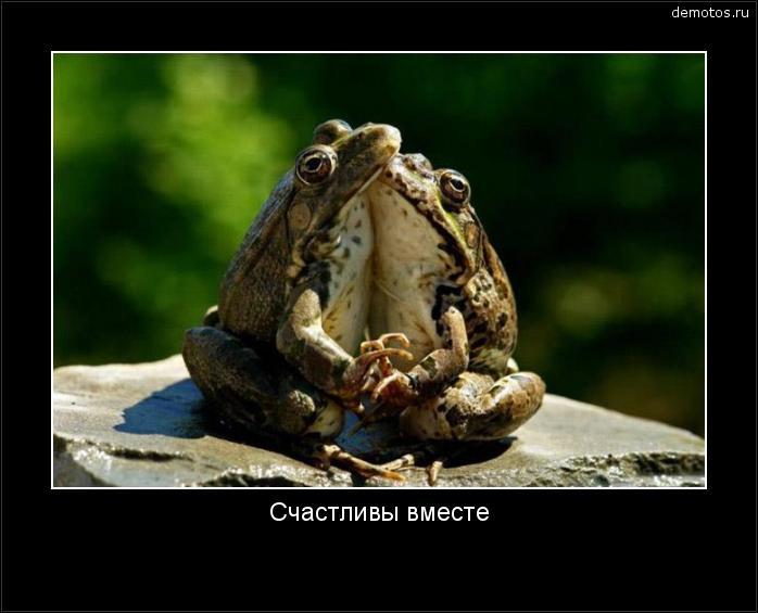 Счастливы вместе #демотиватор
