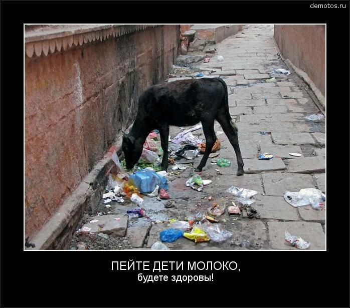 ПЕЙТЕ ДЕТИ МОЛОКО, будете здоровы! #демотиватор