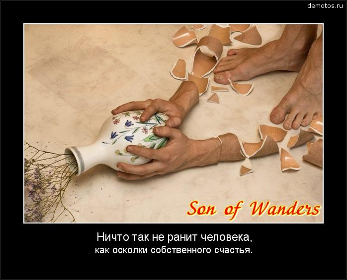 Ничто так не ранит человека, как осколки собственного счастья. #демотиватор