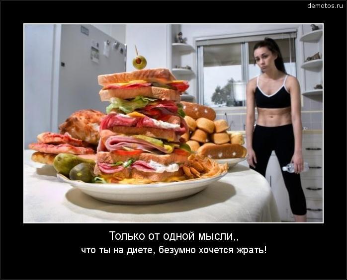 Только от одной мысли,, что ты на диете, безумно хочется жрать! #демотиватор