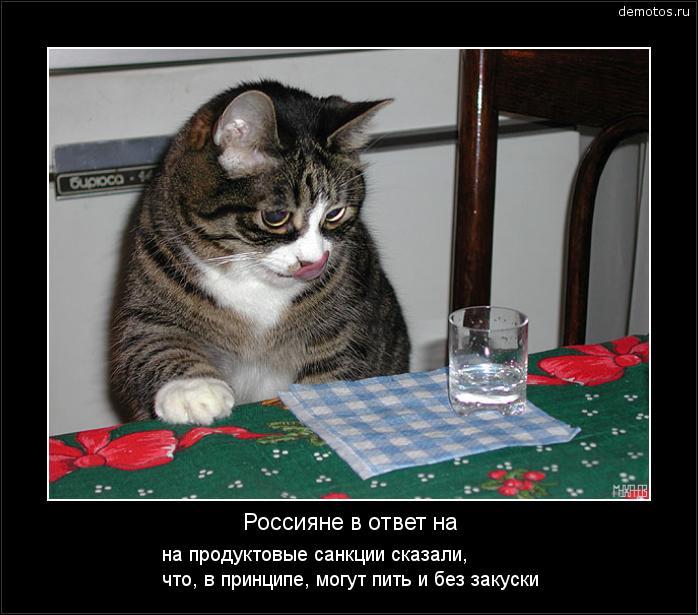Россияне в ответ на на продуктовые санкции сказали, что, в принципе, могут пить и без закуски #демотиватор