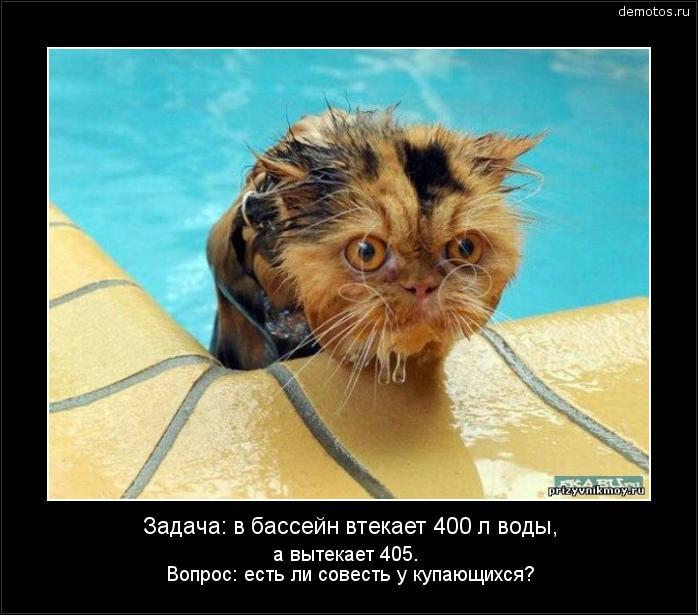 Задача: в бассейн втекает 400 л воды, а вытекает 405. Вопрос: есть ли совесть у купающихся? #демотиватор