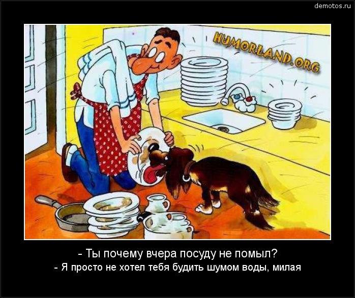 - Ты почему вчера посуду не помыл? - Я просто не хотел тебя будить шумом воды, милая #демотиватор