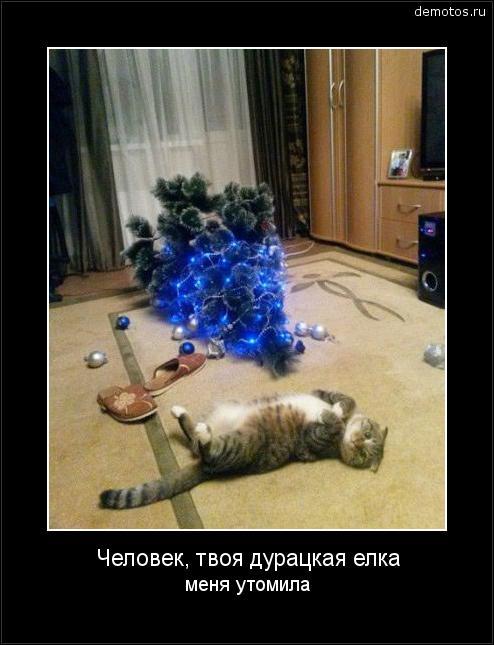 Человек, твоя дурацкая елка меня утомила #демотиватор