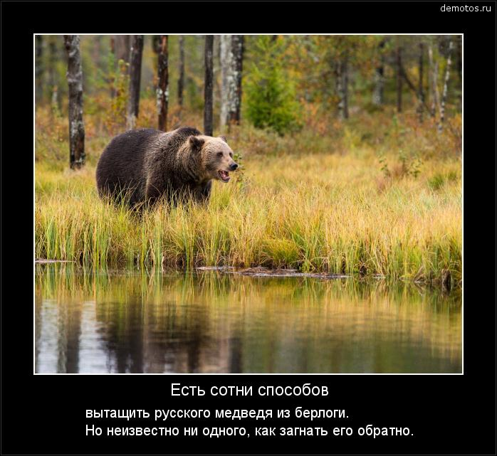 Есть сотни способов вытащить русского медведя из берлоги. Но неизвестно ни одного, как загнать его обратно. #демотиватор
