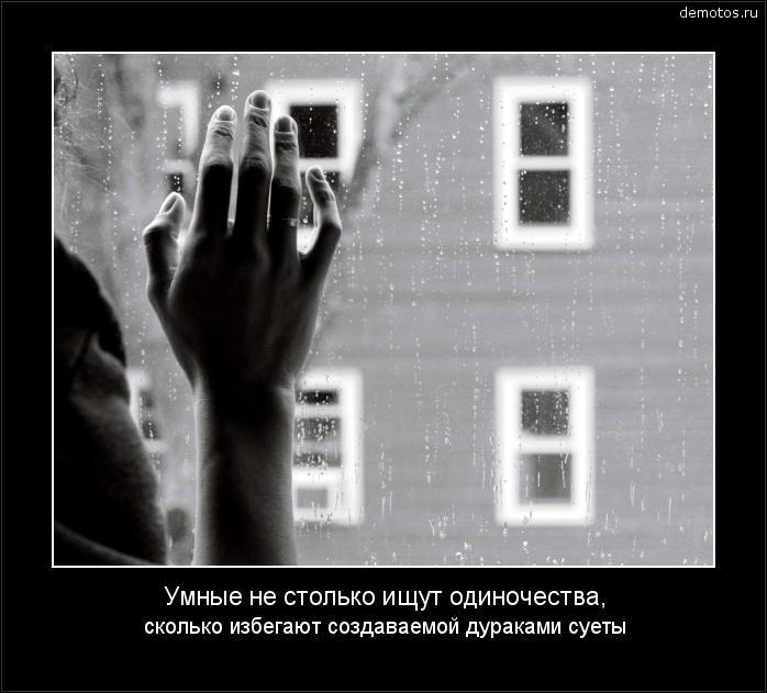 Умные не столько ищут одиночества, сколько избегают создаваемой дураками суеты #демотиватор