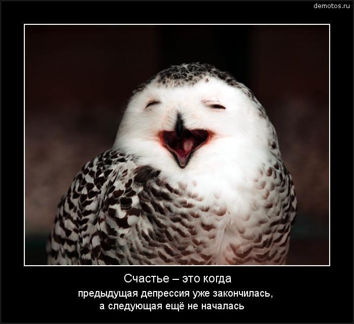 Счастье – это когда предыдущая депрессия уже закончилась, а следующая ещё не началась #демотиватор